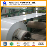 Pre Paint Galvanized (PPGI) Steel Sheet in Different Ral Color