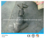 Cl1500 Forged A105n Y Threaded /Thread Globe Valve