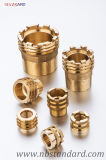 Brass PPR Insert for Pipe Fitting