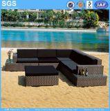 PE Rattan Sofa for Garden Hotel Furniture Patio Furniture