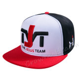 New Fashion Snapback Era Promotinal Baseball Cap Emb. Hat