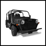 Mini Sightseeing Moke Car Gasoline Model Buggy Vehicle with EEC Certification
