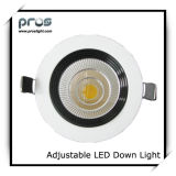 CE&RoHS Adjustable 10W LED Down Light (PL-D-AD10W-W)