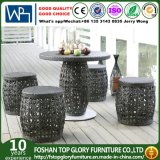 Rattan Chair Furniture Rattan Dining Table Set (TG-1661)