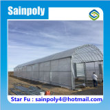 Double Arch Double Film Agricultural Greenhouse
