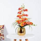 Wholesale Party Home Decoration DIY Latex Real Touch Flower Artificial Orchid Bonsai Pots Plastic Plants Arrangements