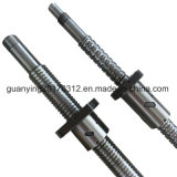 Proloading 63mm Ball Screw Sfu6310 for Automatic Machines