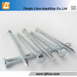 Factory Galvanized Hot Dipped Galvanized Square Boat Nails