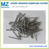Polished Bright Panel Pin Common Wire Nail
