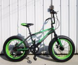 20 Inch Adult BMX Bicycle Street Bicycle with Freestyle Imported From China