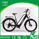 Sport Electric Offroad Motorbike