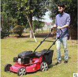 2021 Competitive Price Lawn Mower