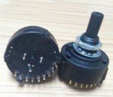 2 Pole 12 Position Dp12t Rotary Switch (RS26)