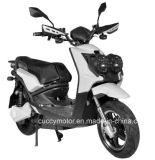 1500W 2000W Digital Electric Dirt Bike (BWS-2) with Big Fat Tire