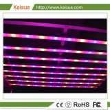 Keisue Plants Factory Lighting Fixture