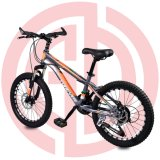 Good Quality Children Bicycle Cheap Kids Bike Price Children Bicycle