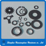 All Type China Fastener Lock Washer Supplier Stainless Steel Washer