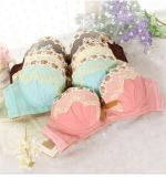 Wholesale Price Sexy Bra and Panty Underwear Set with Lace