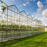 Ad Cheap Float Tempered Glass for Greenhouse Glass