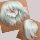 Wholesale Price Cheap Fashion BJD Wig