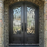 Factory Direct Eyebrow Top Wrought Iron Door (UID-D037)
