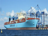 Fob Cargo Logistics Service From China to Bremen/Hamburg/Bremerhaven/Frankfurt, Germany