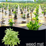 Chinese Landscape PP Woven Geotextile /Ground Garden Cover /Weed Mat Fabric Supply Price