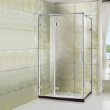 Economy 8mm Tempered Glass Pivot Hinge Door Shower Room