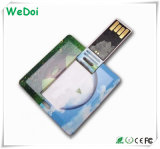 Promotional Card USB Pen Drive with Competitive Price (WY-C28)