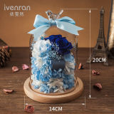 Promotion Real Flower for Valentine Gift