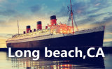 China Shipping Forwarder From Qingdao to Long Beach
