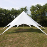 Heavy Duty Twin Pole Commercial Tents/Trade Show Star Canopy/Marquee Tents for Sale