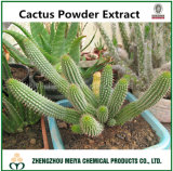 100% Natural China Origin Cactus Powder Extract for Weight Loss