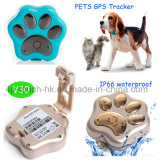 Cute GPS Tracker for Pets with Waterproof IP66 (V30)
