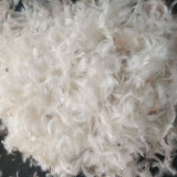 2-4 Cm Duck Feather for Filling Use