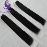 Directly Ship Stock Human Remy Hair Weft (HW80)