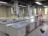 Chemistry Lab Biology Lab Physics Lab Bench Lab Furniture with Ce Certificate