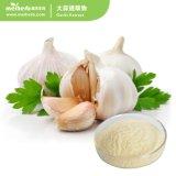 100% Natural Garlic Extract