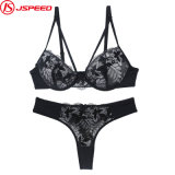 Sexy Designer Lace Women Bra and Panties Set Ladies Underwear Set with High Quality