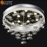 Ceiling Light Cover Ceiling Light Fixtures China Indoor Ceiling Lamp Om66131