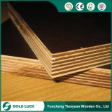 18mm Black / Brown Film Poplar Veneer Plywood for Construction