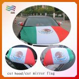 Custom Printed Car Mirror Cover and Car Hood Cover for Mexico