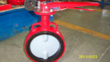 Cast Iron or Cast Steel Butterfly-Type Valve