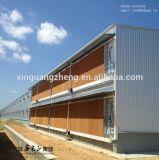 Steel Structure Chicken Farm