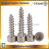 Stainless Steel Hex Socket Cap Head Self Tapping Screws
