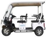 Best Fancy Electric Street Legal Battery Utility Golf Carts