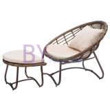 by-487 Wholesale Outdoor Garden Two-Piece Furniture Leisure Rattan Lounge