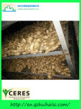 Hot Sale China Fresh Ginger Root Price Per Ton