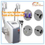 5 in 1 Cryolipolysis Slimming Machine Cavitation RF Lipolaser Two Cryo Handles Can Work Together