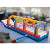 PVC Inflatable Water Slide/Water Slide Inflatable Large Lake/
